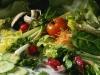 salati